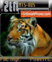 Royle Bengal Tiger theme screenshot
