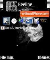 Скриншот темы Skull 06