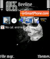 Skull 06 theme screenshot