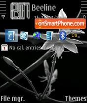 Black And White 03 tema screenshot