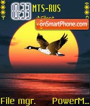 Bird Of Passage Animated es el tema de pantalla
