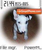 Doggy 01 tema screenshot