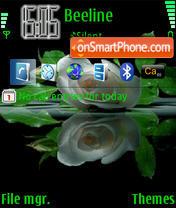 Скриншот темы Rose