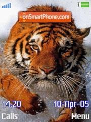 Tigers es el tema de pantalla