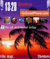 Palm Sunset theme screenshot
