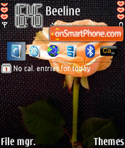 Lovely Rose For N95 theme screenshot