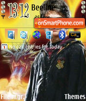 Harry Potter 12 theme screenshot