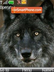 Wolf 06 theme screenshot
