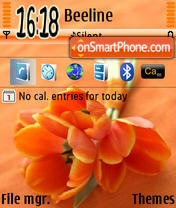 Orange Flowers 01 theme screenshot
