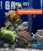 Aquarium Nseries theme screenshot