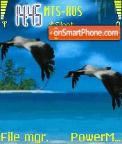 Animated Fly es el tema de pantalla