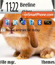 Krolik@cat theme screenshot