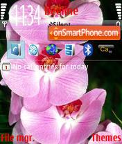 Orchids@standart es el tema de pantalla