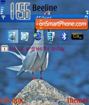 Arctic Tern es el tema de pantalla