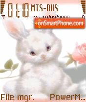 Bunny 01 es el tema de pantalla