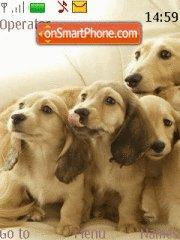 Puppy Dogs theme screenshot