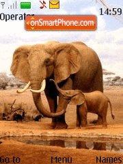 Baby Elephant theme screenshot