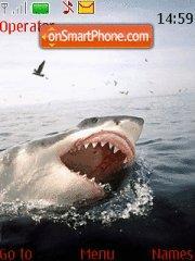 Great White Sharks! theme screenshot