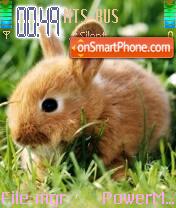 Rabbits 01 es el tema de pantalla