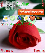 Love Rose es el tema de pantalla
