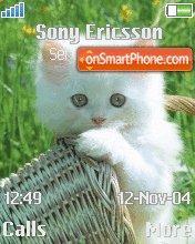Kitten 04 es el tema de pantalla