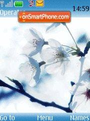White Blue Flowers theme screenshot