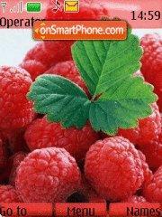 Capture d'écran Raspberry thème