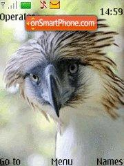 Philippine Eagle theme screenshot