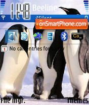 Pinguins 01 theme screenshot
