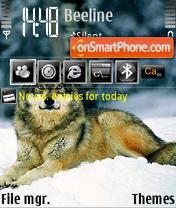 Wolf on Snow theme screenshot