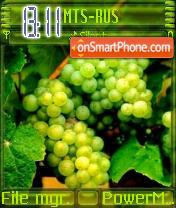 Grapes theme screenshot
