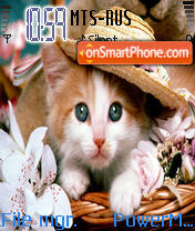 Cat 09 theme screenshot