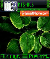 Green Leaf theme screenshot