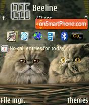 Cats 11 theme screenshot