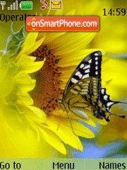 Butterflys theme screenshot