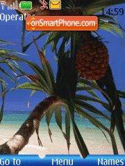 In Paradise theme screenshot