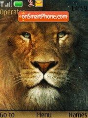 Скриншот темы Lion