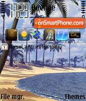 Скриншот темы Palm Beach