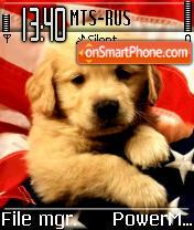 Am Dog es el tema de pantalla