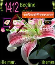 Скриншот темы Black Pink Lily