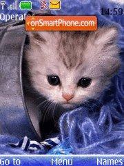 Скриншот темы Nice kitten