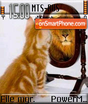 Cat n Lion es el tema de pantalla