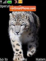 Snow Leopard in Black theme screenshot