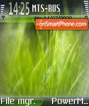 Скриншот темы Grass Vista