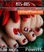 Ladybug Toes theme screenshot