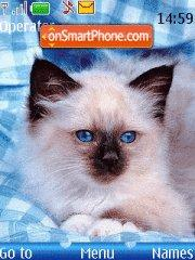Cat tema screenshot