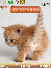Ginger Kitten theme screenshot