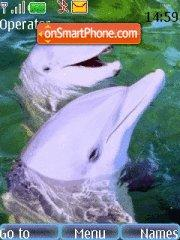 Dolphine tema screenshot