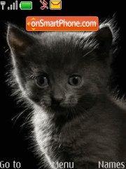 Cute Black Cat tema screenshot