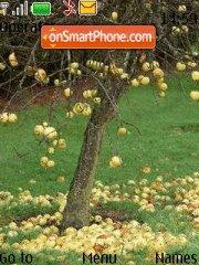Apple Tree tema screenshot